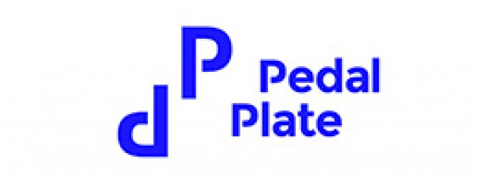PEDAL PLATE